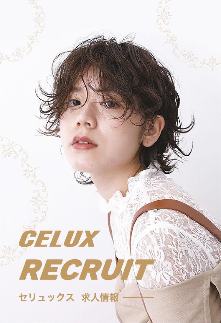 CELUX RECRUIT セリュックス 求人情報