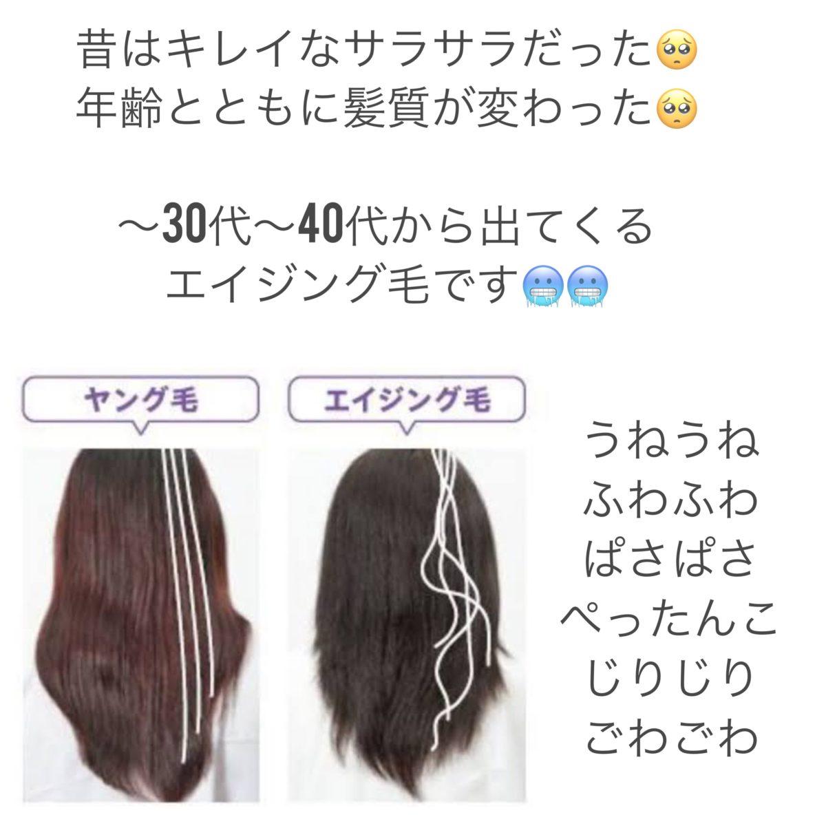 エブリシング毛